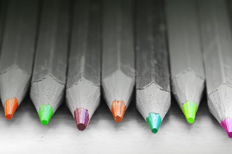 Группа в составе карандаши цвета в черно-белом стоковая фотография rf