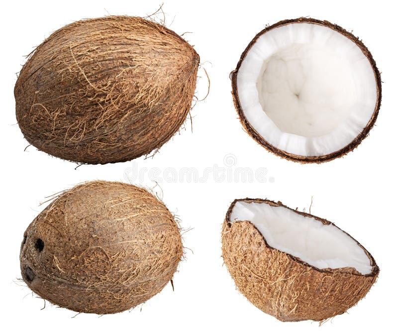 Группа в составе кокосы изолированные на белой предпосылке Путь клиппирования стоковая фотография rf