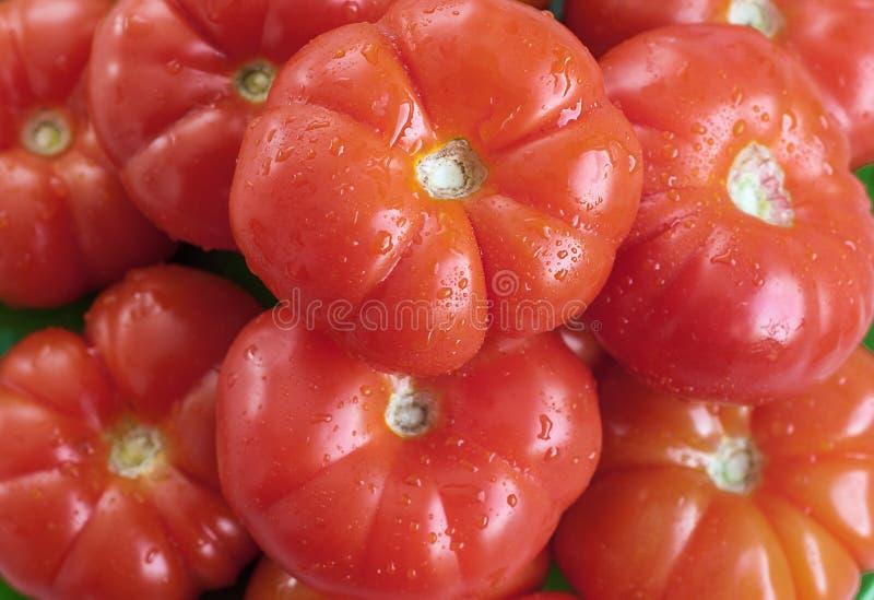 Группа в составе красные свежие овощи томатов стоковое фото rf