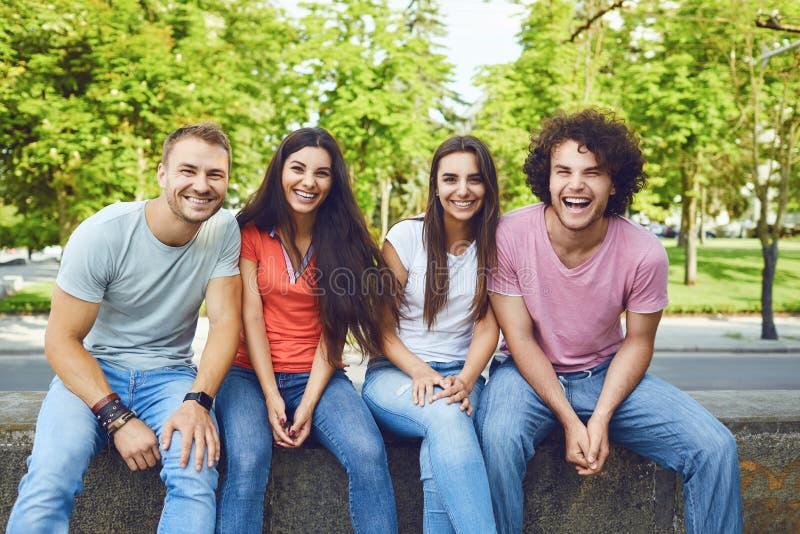 Группа в составе молодые счастливые люди смеется сидеть в парке стоковые фотографии rf