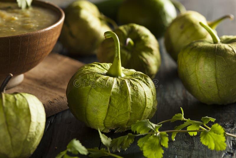 Группа в составе органическое зеленое Tomatillos стоковое фото rf