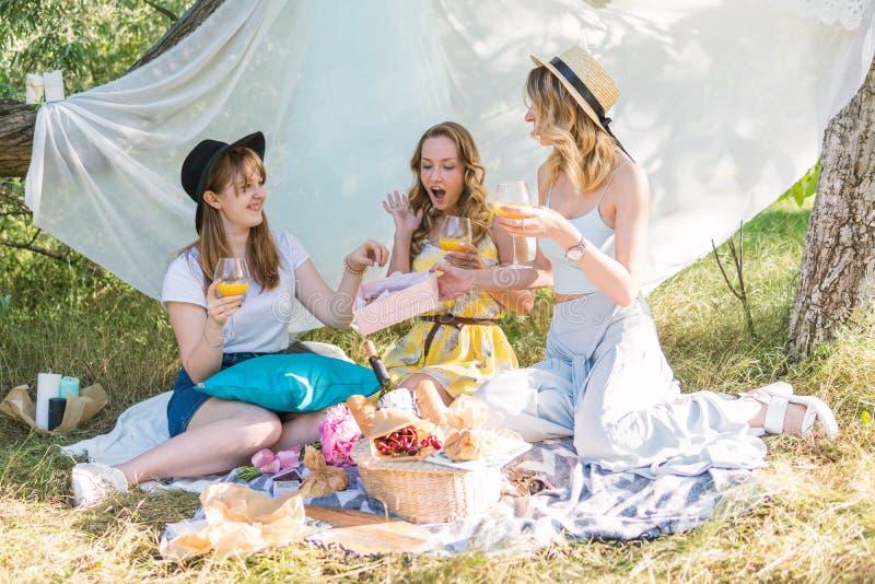 Группа в составе подруги делая пикник внешний Они имеют потеху стоковая фотография rf