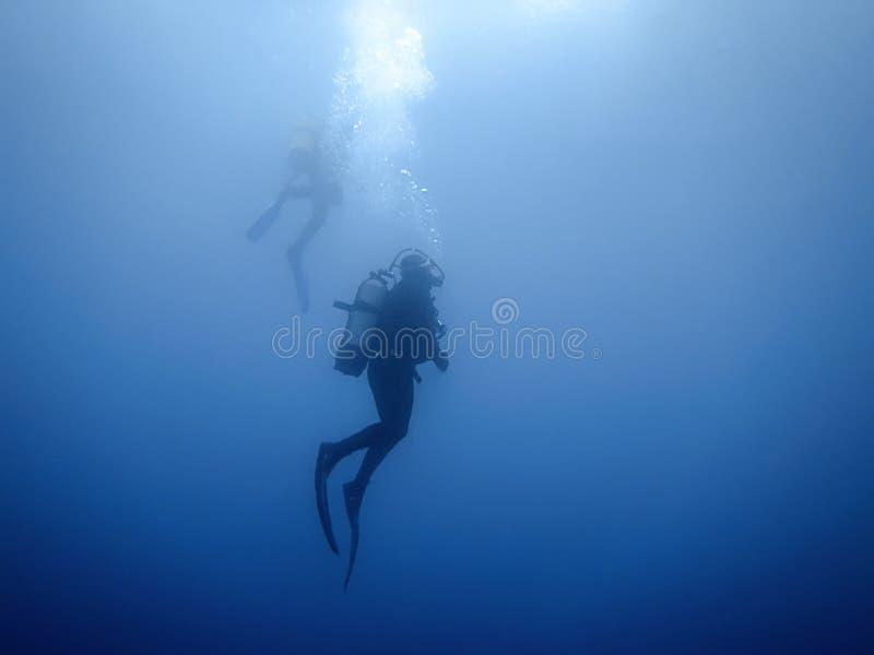 Группа в составе предпосылка водолазов подводная стоковые изображения
