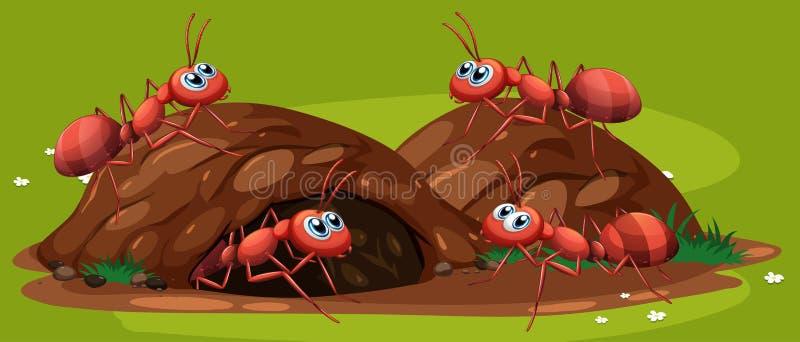 Группа в составе работая муравьи иллюстрация вектора