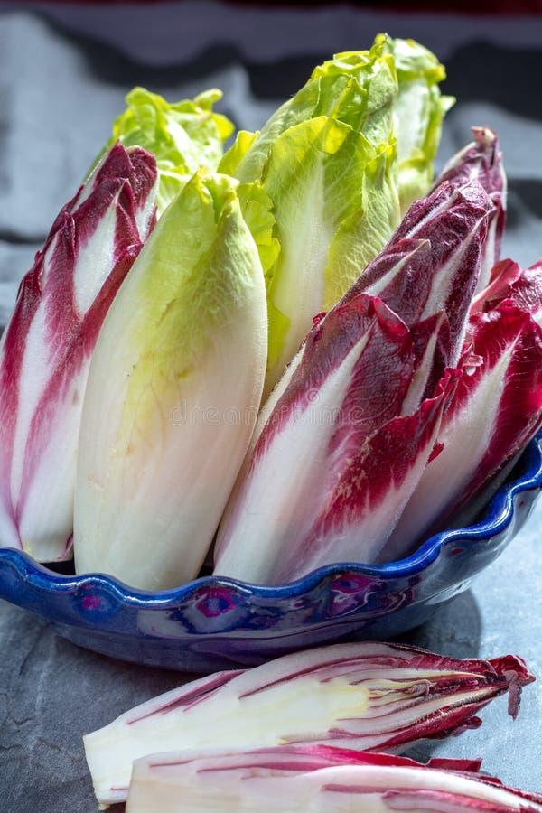 Группа в составе свежие зеленые бельгийский эндивий или цикорий и красные овощи Radicchio, также известная как salade witlof стоковое изображение