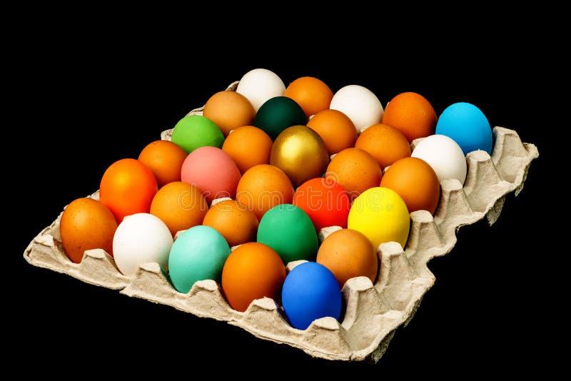 Группа в составе свежие красочные пасхальные яйца в бумажном подносе изолированном дальше стоковые изображения