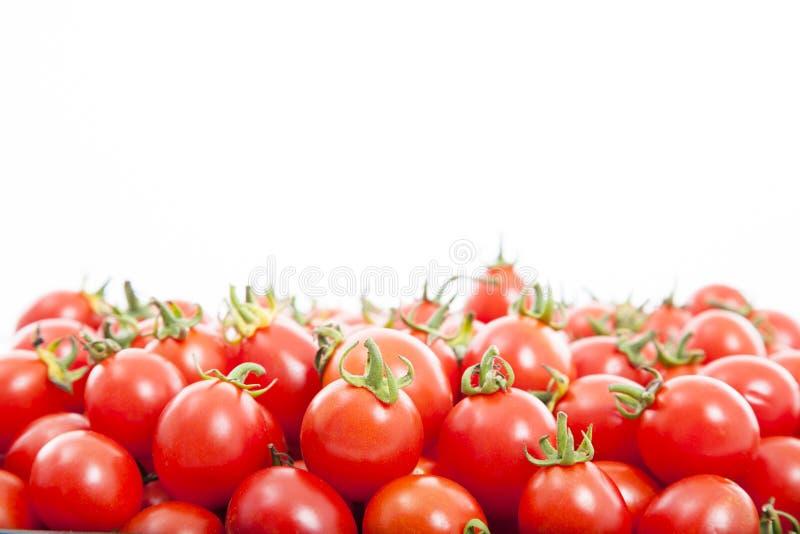 Группа в составе свежие томаты стоковая фотография rf