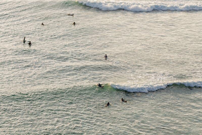 группа в составе серфинг под солнечным светом вечера стоковые фото