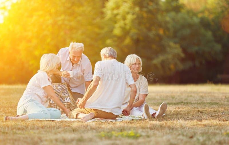 Группа в составе старшии делая пикник стоковое фото rf