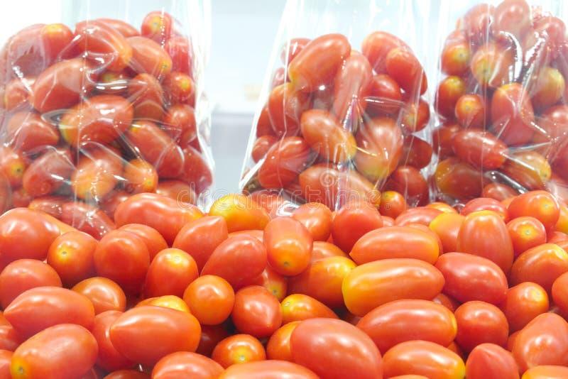 Группа в составе томаты вишни и томаты вишни в сумке стоковое фото rf