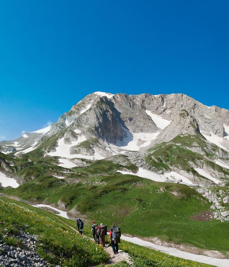 Группа в составе туристы идя вдоль следа в горах стоковое фото