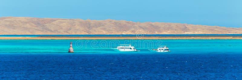Группа в составе туристы ныряя в Красном Море, Hurghada, Египте стоковое фото rf
