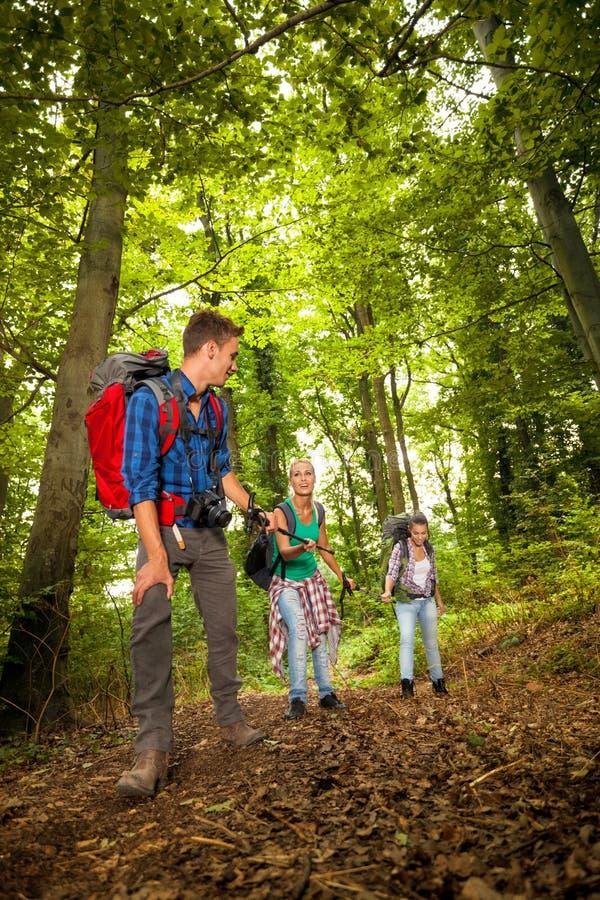 Группа в составе hiker стоковые фотографии rf