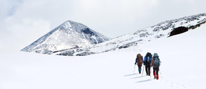 Группа в составе hikers стоковые изображения