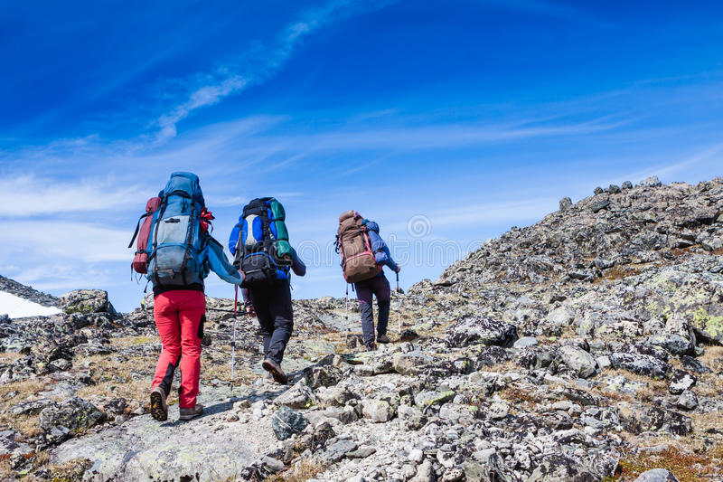 Группа в составе hikers стоковые фото