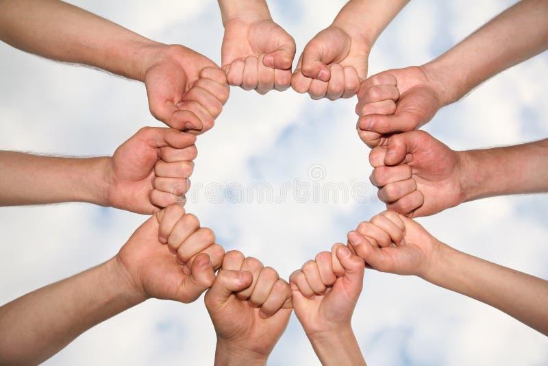 группа кулачка стоковые фотографии rf