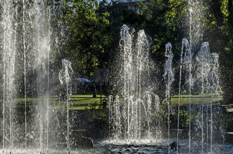 Группа от малых фонтанов пропуская в переднем rockery красоты стоковая фотография rf