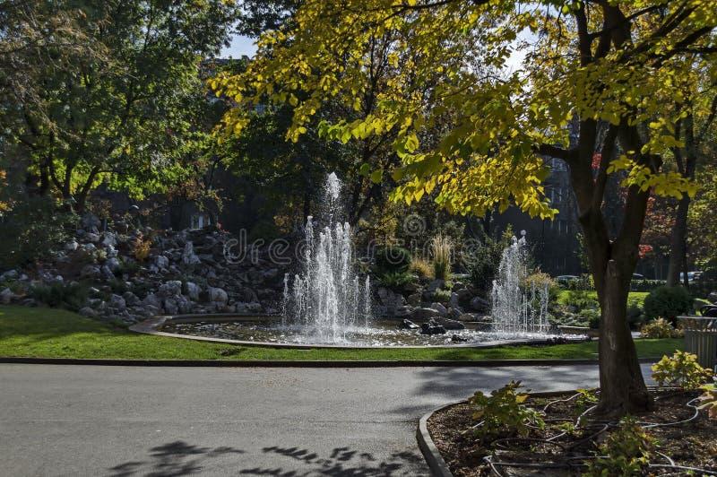 Группа от малых фонтанов пропуская в переднем rockery красоты стоковое фото rf