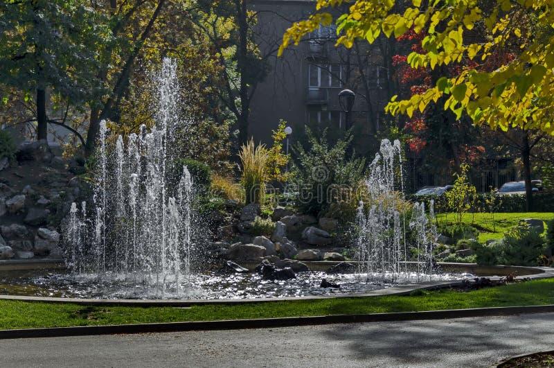 Группа от малых фонтанов пропуская в переднем rockery красоты стоковые фотографии rf