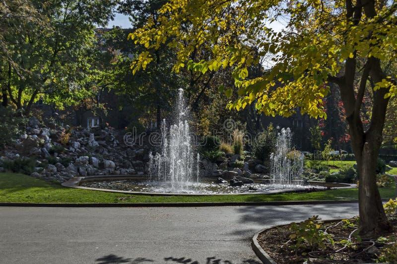 Группа от малых фонтанов пропуская в переднем rockery красоты стоковые фото