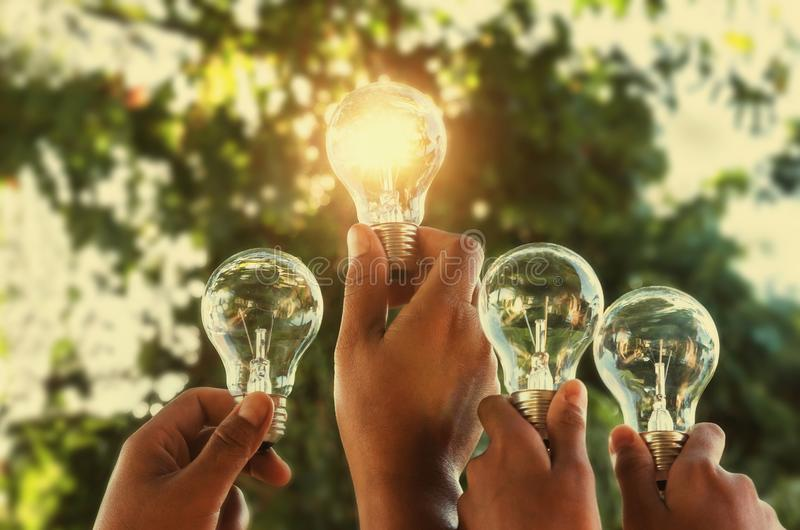 группа руки концепции солнечной энергии держа электрическую лампочку стоковые фотографии rf