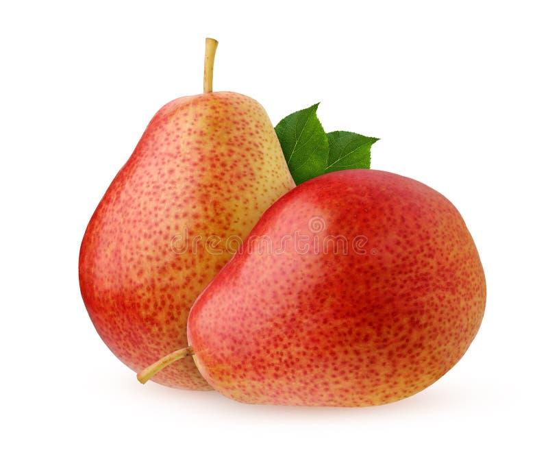 Груша изолированная на белой предпосылке Весь плод с листьями стоковое изображение