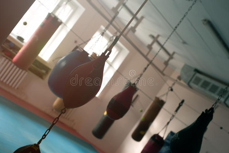 Груши вися на цепях на крюках стоковые фото