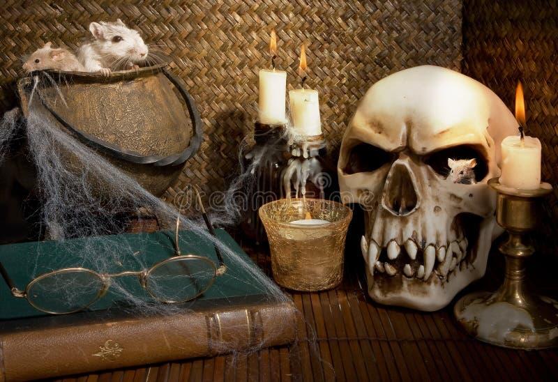 грызуны halloween стоковая фотография rf