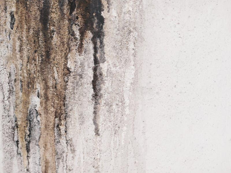Грязная жирная стена стоковая фотография rf