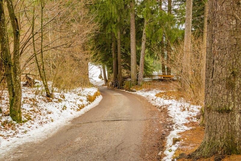 Грязная улица горы стоковое изображение rf