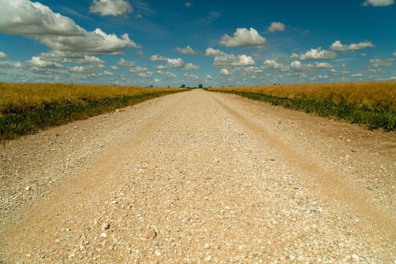 Грязная улица окруженная аграрными полями со славным голубым небом в предпосылке - низкой угловой съемке стоковые изображения rf