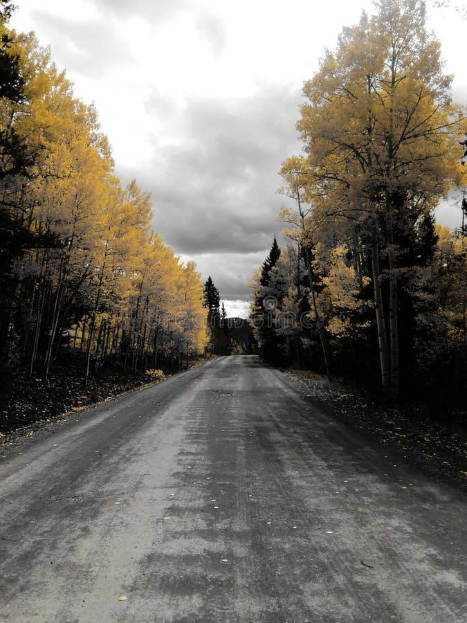 Грязная улица падения стоковое фото