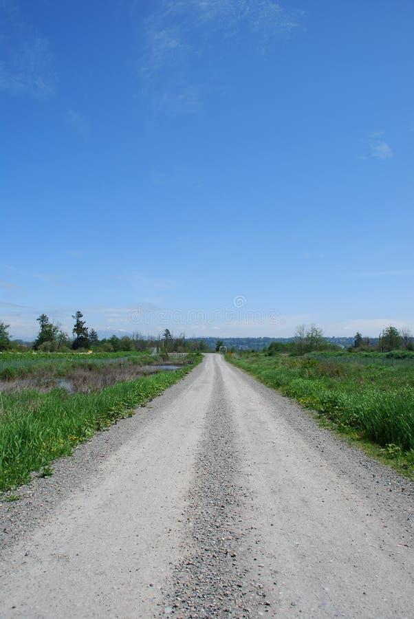 грязная улица стоковое фото