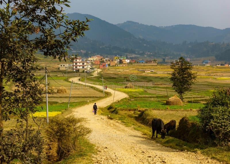 Грязная улица водя к Sankhu, Непалу стоковое изображение