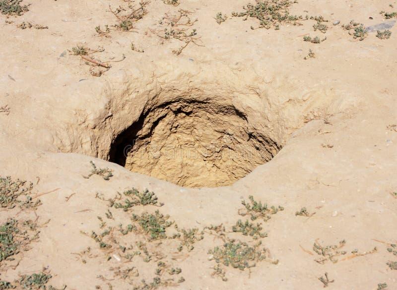 Грязь земли Брайна стоковая фотография rf