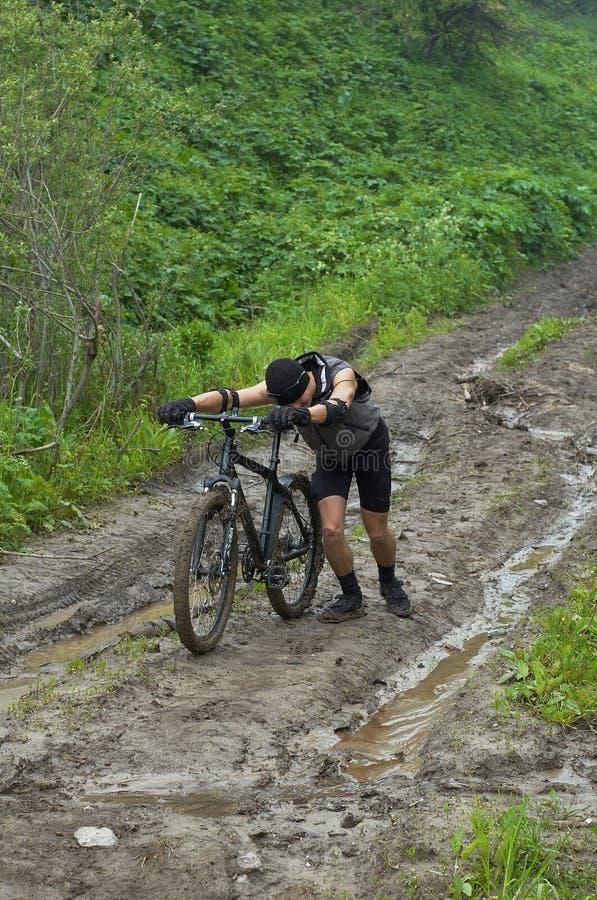 грязь, котор нужно погулять стоковые изображения rf