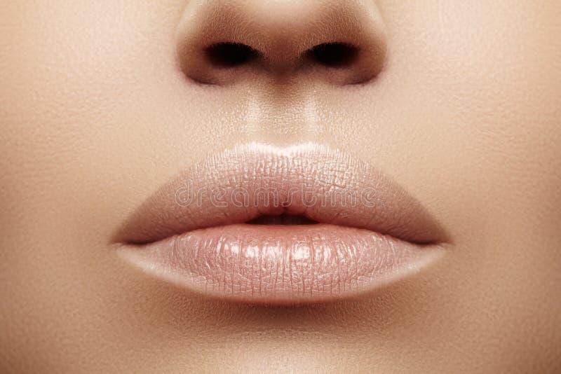 Губы крупного плана толстенькие Забота губы, увеличение, заполнители Фото макроса с деталью стороны Естественная форма с совершен стоковые фотографии rf