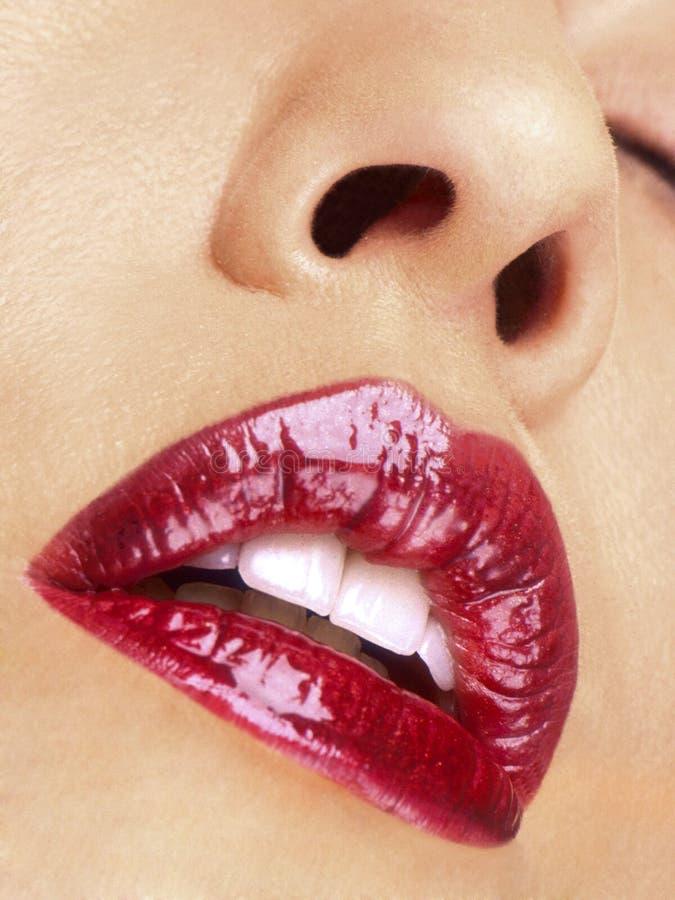 губы стоковое фото rf