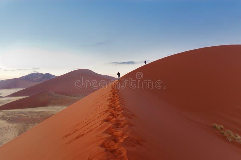 Гулять на дюны восхода солнца в Намибии стоковое фото rf