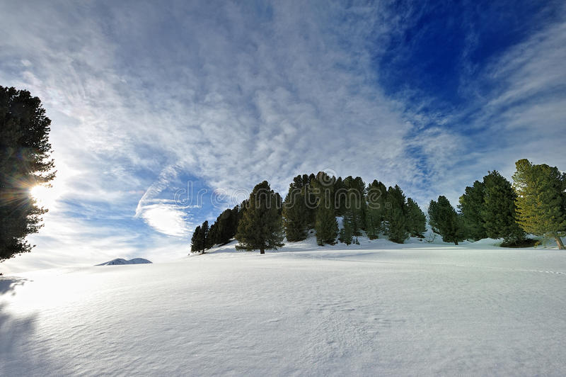 Гулять на снежок в альп стоковые изображения rf