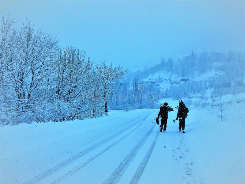 гулять снежка стоковое изображение rf