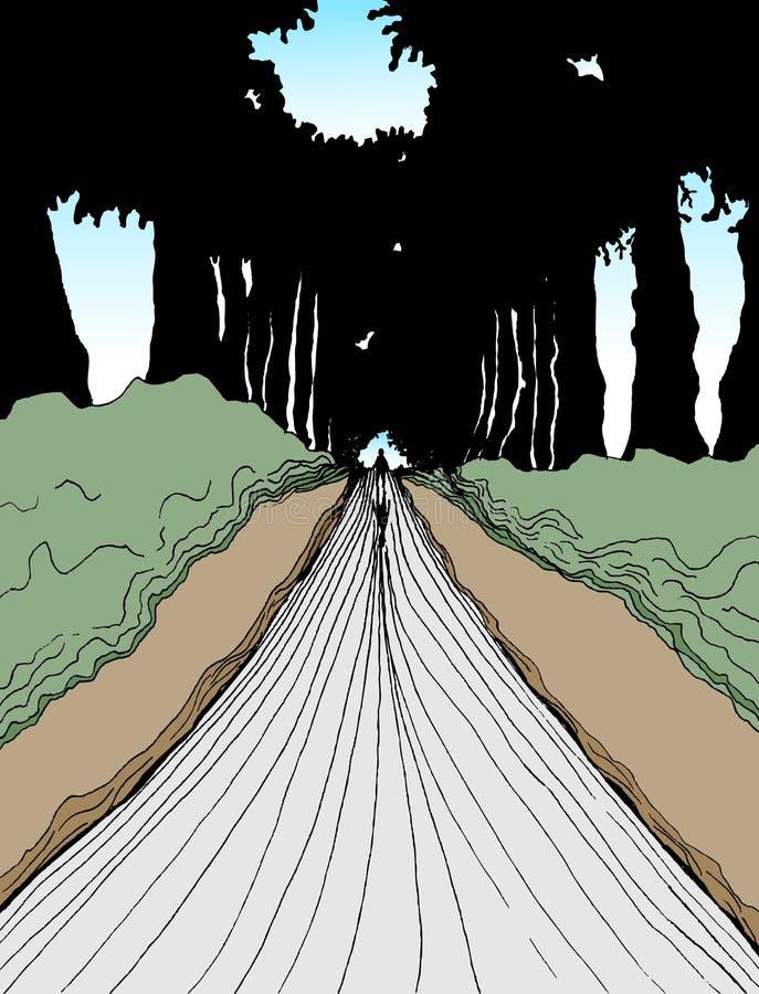 гуляя древесины иллюстрация вектора