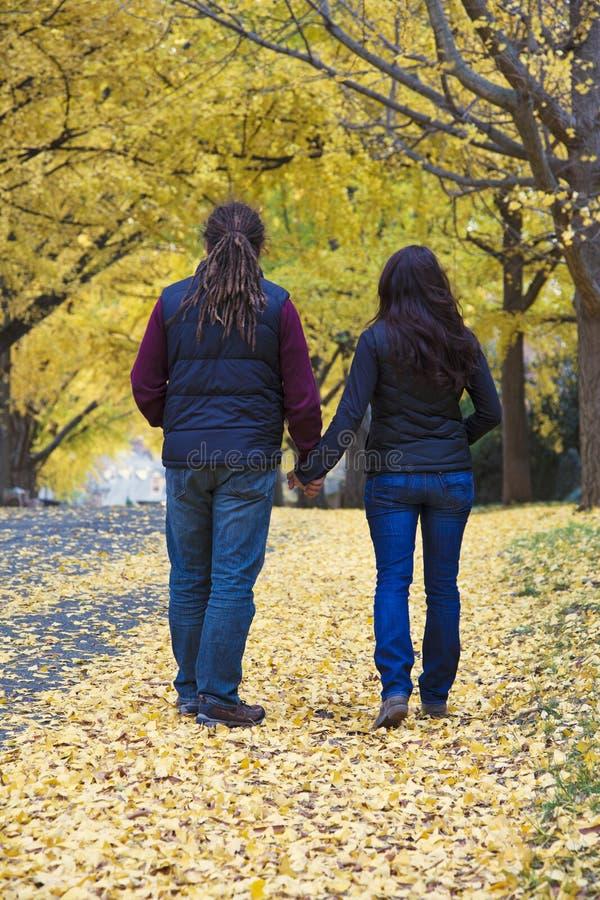 Гуляя пары в парке стоковое изображение
