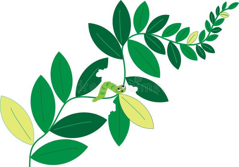 гусеница ест листья иллюстрация вектора