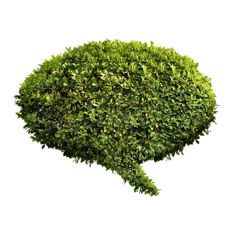 Густолиственный зеленый пузырь речи стоковое изображение