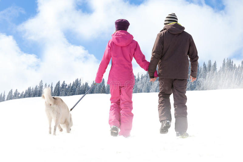 гуляя зима стоковое изображение rf