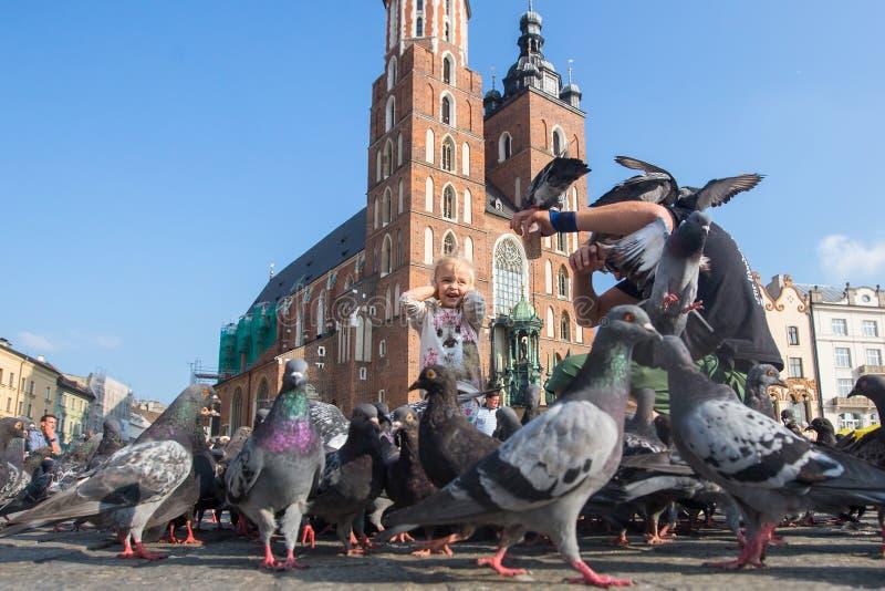 Главным образом рыночная площадь krakow Польша стоковые изображения rf