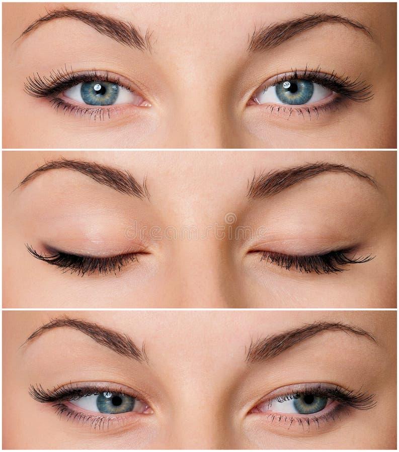 Глаза серого цвета стоковое фото
