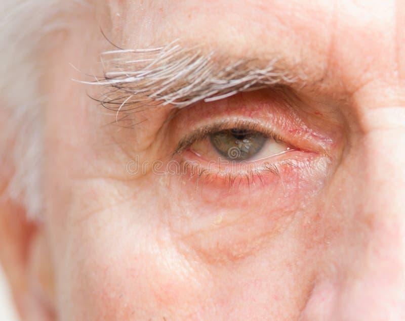Глаза старика стоковое изображение rf