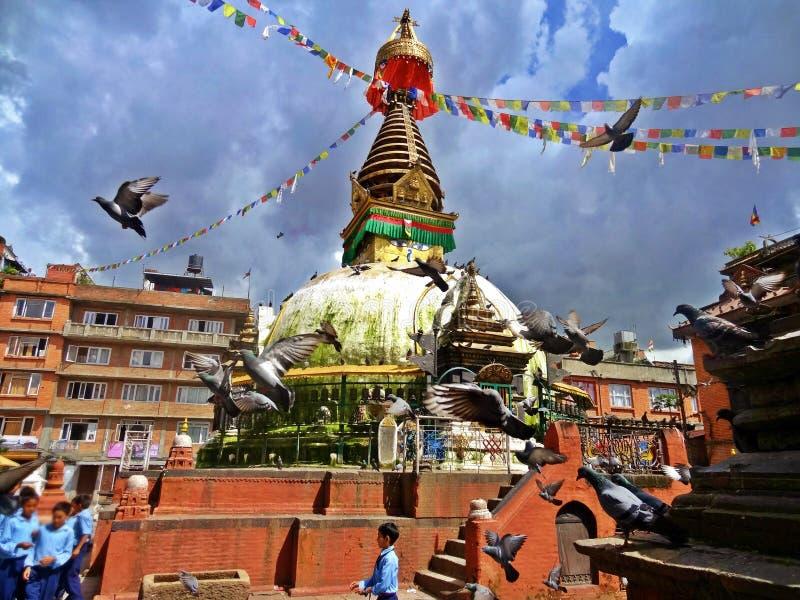 Глаза Buddhas стоковая фотография rf